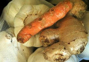 garlic-turmeric-ginger