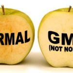 GMO??  GM-Ohhhh?!  And GM-NO!!