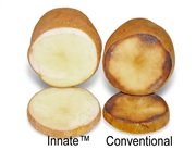 innate-potato-no-gmo